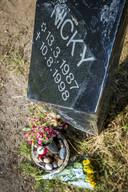 Monumentje voor Nicky op de Brunssummerheide.