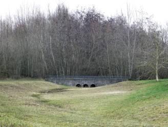 """Kortrijk krijgt 'Grootste Bos' op Vlasakker: """"Aanplant drie- tot vijfduizend bomen mogelijk"""""""
