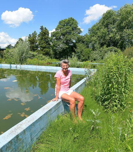 Hoe zwembad De Duikelaar veranderde van trefpunt tot plantenbak