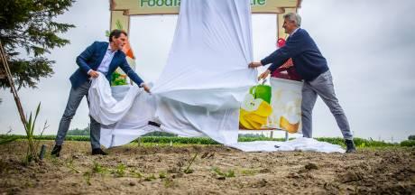 Foodlab Hoeksche Waard leidt langs de agrarische parels, maar is ook bittere noodzaak