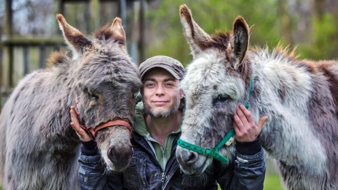 Deze ezels zorgen voor kinderen met autisme en angsten