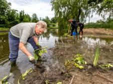 Maassluise wijkdeals in strijd tegen overlast door heftige regenval