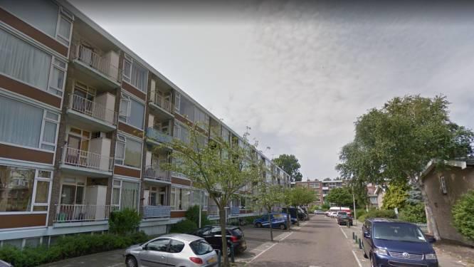 Niet 100 minder, maar 650 woningen méér in Haagse wijk De Venen: operatie kost ruim 15 miljoen euro