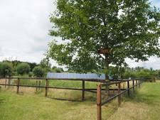 LNMH uit Haaren leert de eigen tuin klimaatbestendig te maken