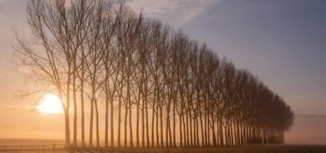 Prachtige natuurfoto's imponeren jury van 'Het Mooiste Kiekje' in Wierden en Hellendoorn