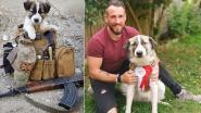 Britse soldaat haalt puppy vanonder het puin in Syrië, maar het is hond Barrie die hem zal redden
