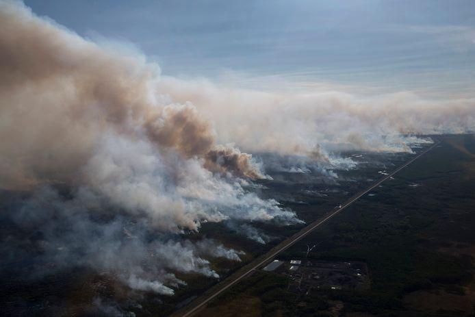 Bij een zombiebrand in het Canadese Chuckegg Creek ging vorig jaar 350.000 hectare bos verloren.