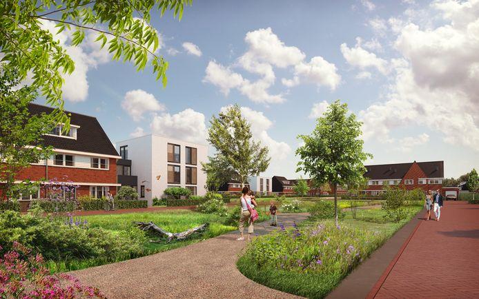 Impressie van het centrale park in de nieuwe Reeshofwijk.