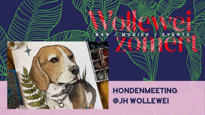 Jeugdhuis Wollewei organiseert een hondenmeeting