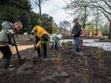 Schoolplein van basisschool Effen transformeert van stenen vlakte naar plantrijke buitentuin