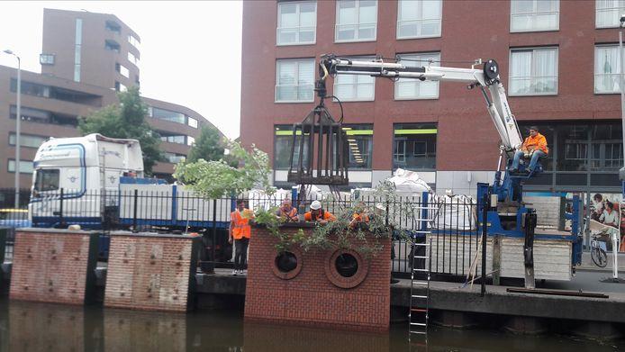 Eind vorig jaar zijn de bomen geplaatst in de proefopstelling voor groene kades langs de Nieuwe Mark in Breda.