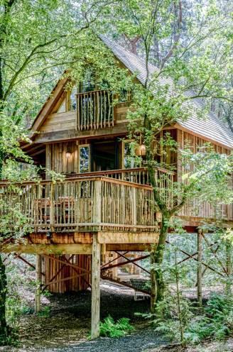 """Karen (35) en Bram (36) bouwden luxe sprookjeshut in Turnhouts bos: """"Zelfs de dakpannen zijn van hout gemaakt"""""""