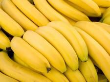 Chiquita verdubbelt aanvoer bananen naar Vlissingen