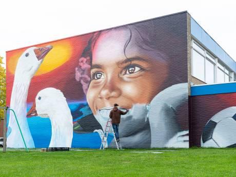 Mural maakt van anonieme gymzaal in Goes een opvallend gebouw