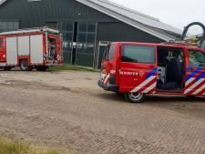 Dubbel pech in Brandwijk: brandweerman die koe uit gierput wil redden, krijgt balk tegen zijn hoofd
