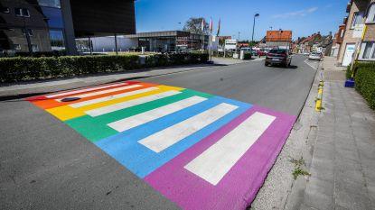 Iedereen wil regenboogzebrapad, maar toch kibbelen gemeenteraadsleden