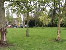 Eigenaar Deventer bomenhapper in beeld bij politie