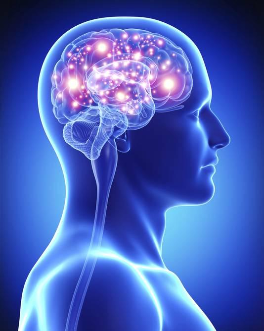 Het brein van iemand met hyperthymesia werkt anders dan mensen met een normaal geheugen, ontdekten dokters.