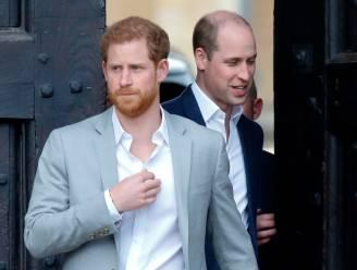 Prins William maakt zich zorgen om broer Harry en Meghan Markle na emotioneel interview
