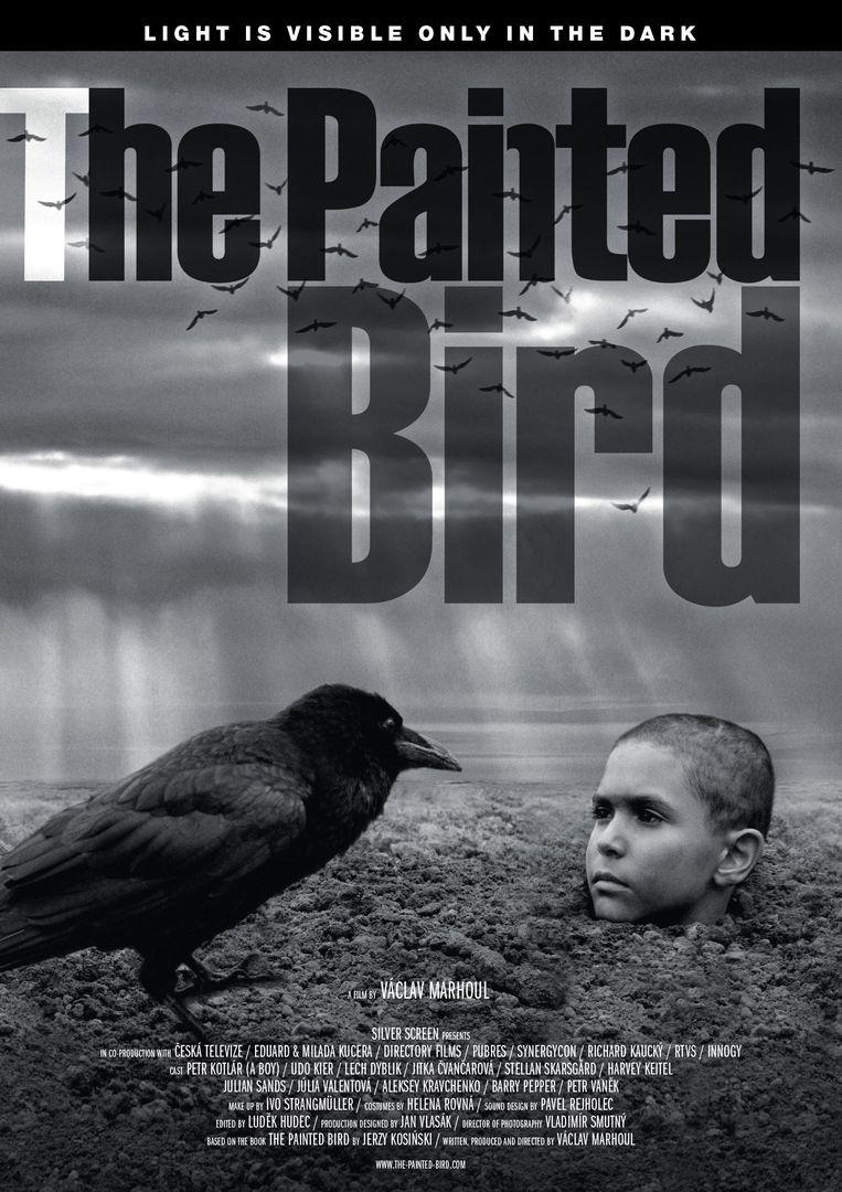 Filmposter voor The Painted Bird. Beeld