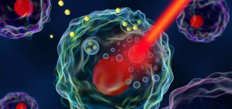 Tumoren slim te lijf met warmte: algoritmes vergroten precisie van hyperthermie