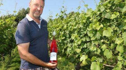 Slechts 115 magnumflessen rosé van Monteberg