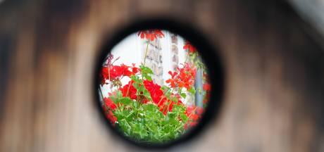 ZIEN: Met andere ogen kijken naar Breda