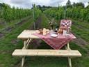 In de wijngaard van Mérula in Moerbrugge kan gepicknickt worden.