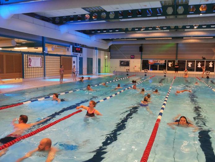 De Schijndelse Zwemvierdaagse.