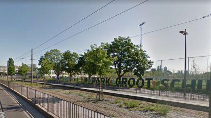 De Lijn houdt lippen stijf over mogelijke tramverbinding tussen Deurne-Noord en Deurne-Zuid