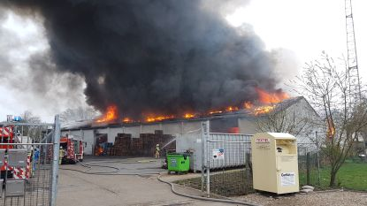 Grote rookpluim door brand in magazijn in Herentals