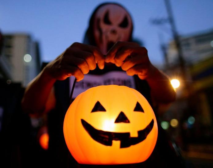 De grote oranje pompoenen zijn ideaal voor halloween decoraties.