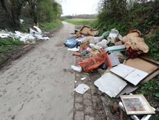 'Propere Burgers' nemen zaterdag deel aan World Cleanup Day