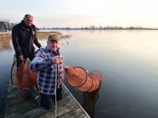 Uitzetten van jonge palingen jaarlijks ritueel; traditie gaat terug tot 1900