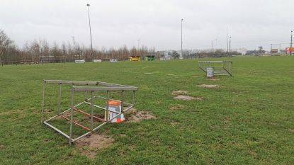 Goed nieuws voor KV Brucom Sport: Voetbalveld opnieuw bespeelbaar na molleninvasie, minstens zeven diertjes gevangen