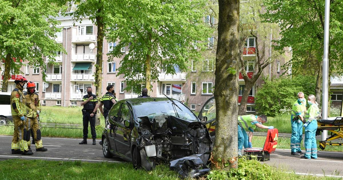 Vrouw gewond bij botsing tegen boom in Tilburg.