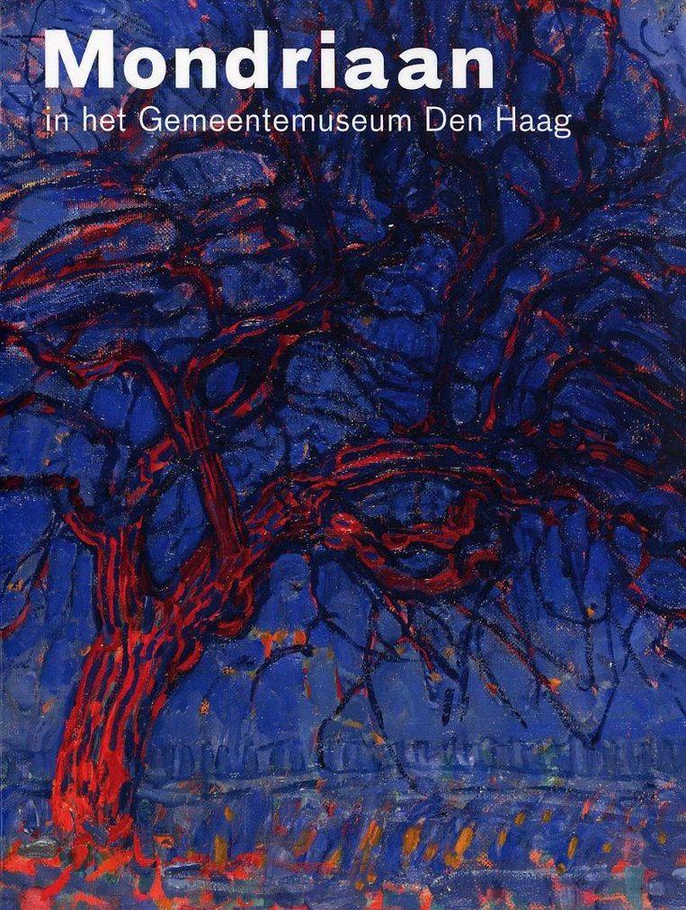 Mondriaan in het Gemeentemuseum Den Haag Beeld -