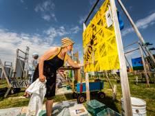 Megakunstwerk in Park Lingezegen is klaar; werk nog hele maand september te zien
