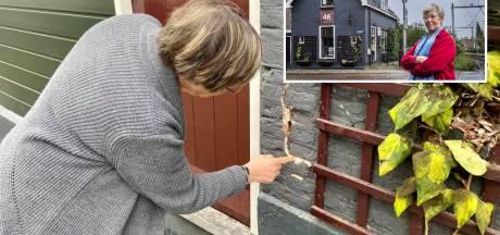 Boem! En toen zat het 'spoorweghuisje' van Aline vol scheuren, maar wie reed het beroemde huis aan gort?