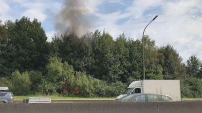 Bomen in brand op Brusselse ring
