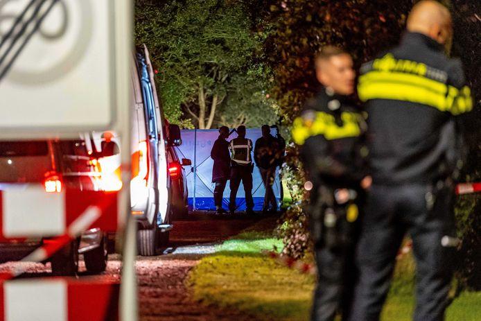 In het dorp Boelenslaan in Friesland heeft de politie een automobilist neergeschoten die op agenten was ingereden.