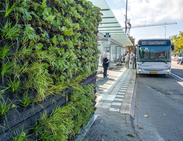 Plantjes op de buitenwand van het kantoortje op het busstation.