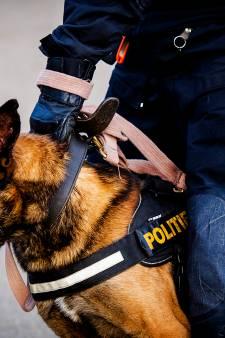 Inbreker verstopt zich onder aanhanger in Druten, geeft zich over als politie dreigt met loslaten hond