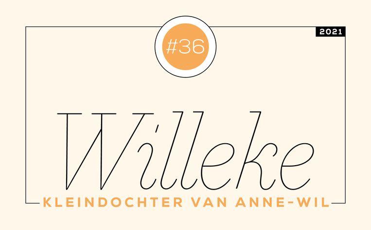 Willeke Beeld Libelle