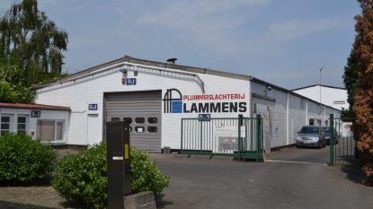 Slachterij Lammens opnieuw in vieze papieren: bedrijf al week dicht