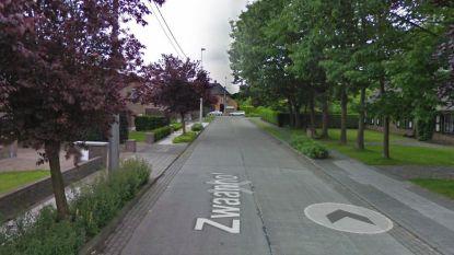 Verkeershinder in Zwaanhof