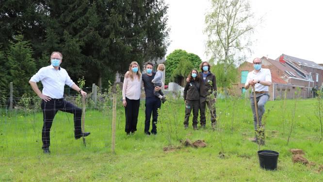 Vlaamse Rand is 7.874 bomen rijker dankzij alternatieve editie Gordel 2020