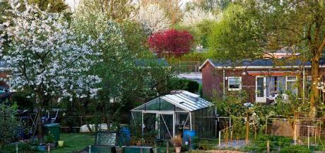 Wéér een oude wijk tegen de vlakte: de Wielewaal moet plaatsmaken voor nieuwe woningen