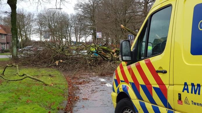 Een 62-jarige automobilist werd bedolven onder een boom op de Goolkatenweg. Hij overleed aan de gevolgen.