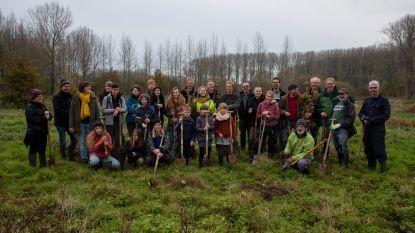 Natuurpunt plant driehonderd bomen aan in vallei Gondebeek in 'Landskouter Zeehaven'